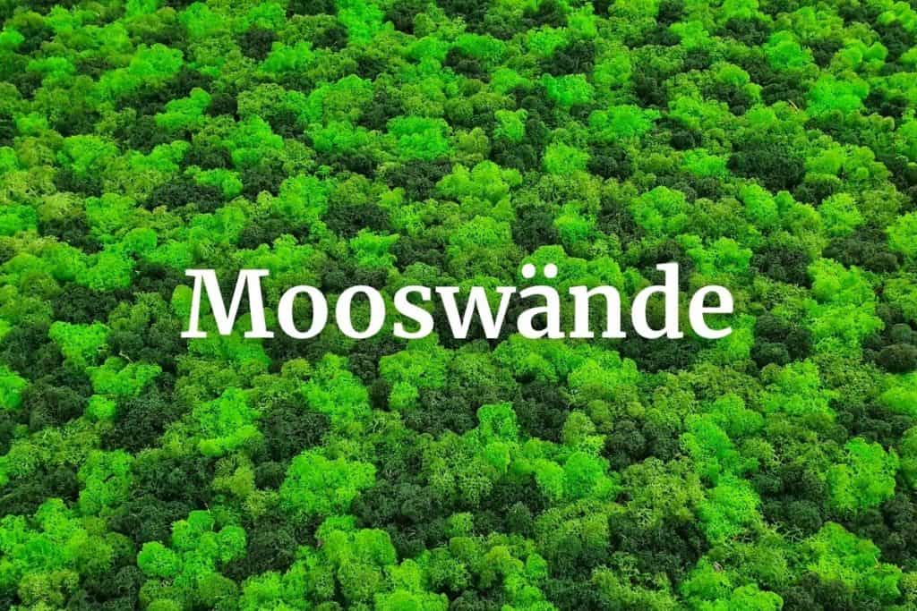Mooswände Megamenue